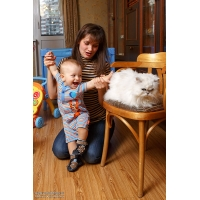 Андрюшка и кот