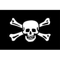 Макет флага